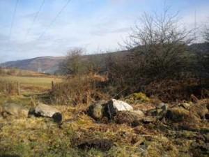 Remains of Wern Goch Llanwynno