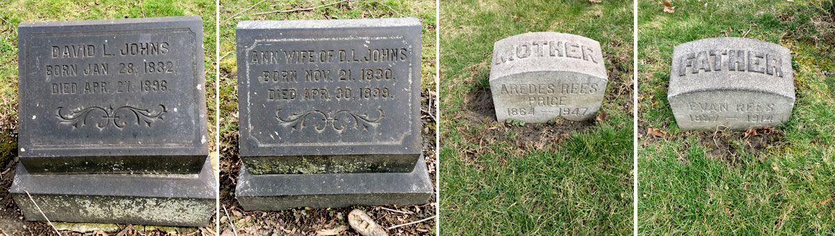 Moses Family History - graves of Ann Moses branch descendants